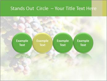 0000072884 PowerPoint Templates - Slide 76