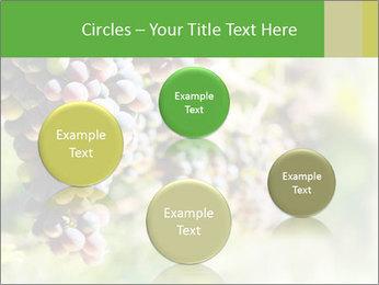 0000072884 PowerPoint Templates - Slide 77