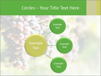 0000072884 PowerPoint Templates - Slide 79
