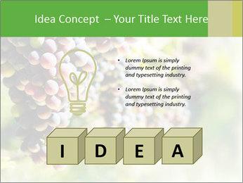 0000072884 PowerPoint Templates - Slide 80