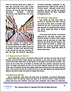 0000072888 Word Templates - Page 4