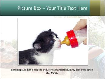 0000072903 PowerPoint Template - Slide 15