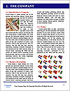 0000072913 Word Template - Page 3