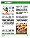 0000072915 Word Templates - Page 3