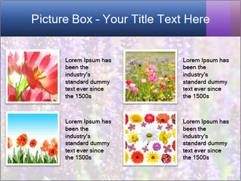 0000072918 PowerPoint Template - Slide 14