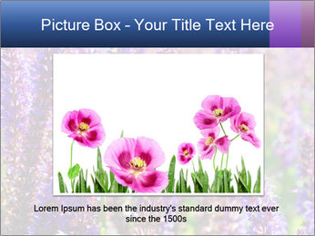 0000072918 PowerPoint Template - Slide 15
