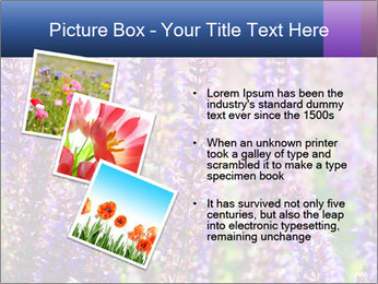 0000072918 PowerPoint Template - Slide 17