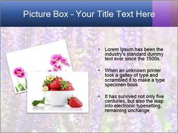 0000072918 PowerPoint Template - Slide 20