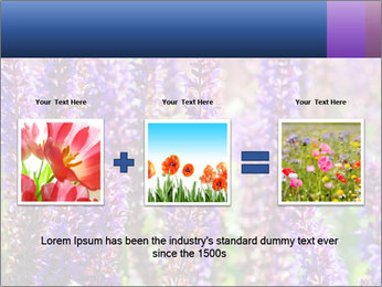 0000072918 PowerPoint Template - Slide 22