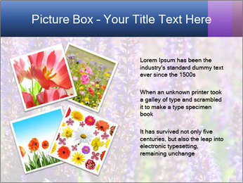 0000072918 PowerPoint Template - Slide 23