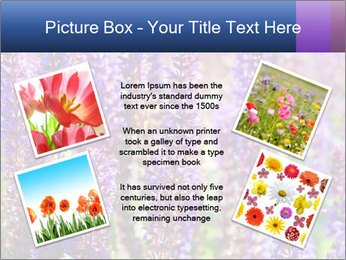 0000072918 PowerPoint Template - Slide 24