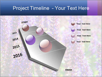 0000072918 PowerPoint Template - Slide 26
