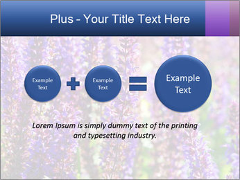 0000072918 PowerPoint Template - Slide 75
