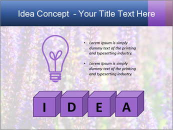 0000072918 PowerPoint Template - Slide 80