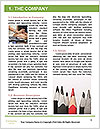 0000072920 Word Template - Page 3