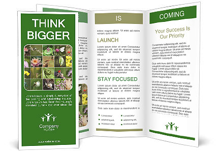 0000072921 Brochure Template