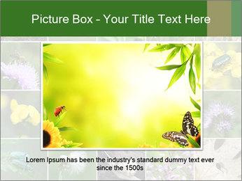 0000072921 PowerPoint Template - Slide 15