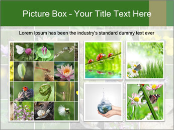 0000072921 PowerPoint Template - Slide 19