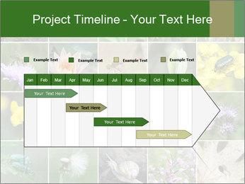 0000072921 PowerPoint Template - Slide 25