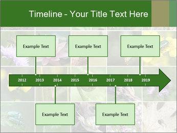 0000072921 PowerPoint Template - Slide 28