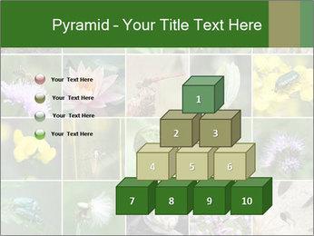 0000072921 PowerPoint Template - Slide 31