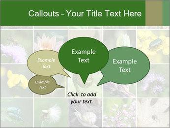 0000072921 PowerPoint Template - Slide 73