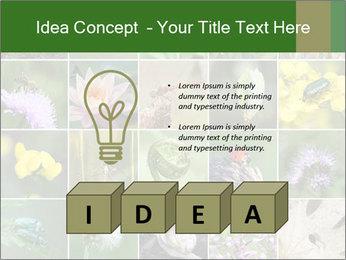 0000072921 PowerPoint Template - Slide 80