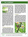 0000072921 Word Template - Page 3