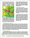 0000072921 Word Template - Page 4