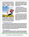 0000072932 Word Template - Page 4