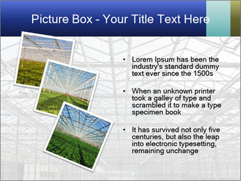 0000072935 PowerPoint Template - Slide 17