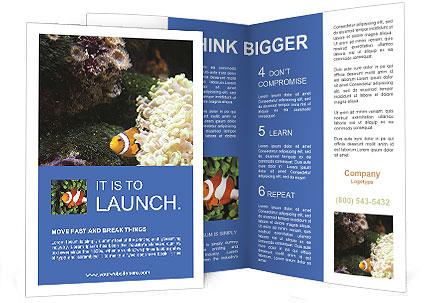 0000072939 Brochure Templates
