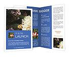 0000072939 Brochure Template