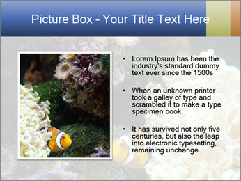 0000072939 PowerPoint Template - Slide 13