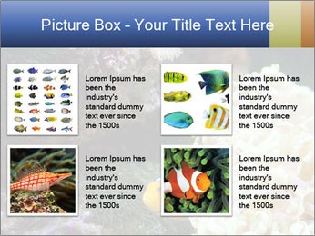 0000072939 PowerPoint Template - Slide 14