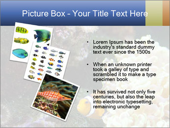 0000072939 PowerPoint Template - Slide 17