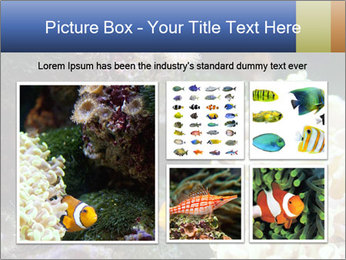 0000072939 PowerPoint Template - Slide 19