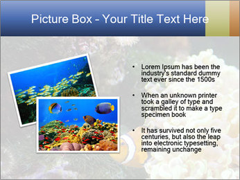 0000072939 PowerPoint Template - Slide 20