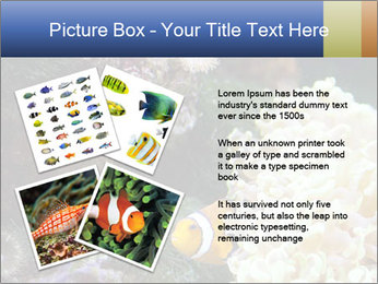 0000072939 PowerPoint Template - Slide 23