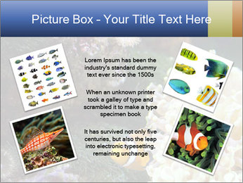 0000072939 PowerPoint Template - Slide 24