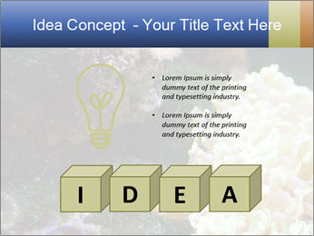 0000072939 PowerPoint Template - Slide 80