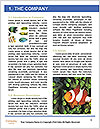 0000072939 Word Templates - Page 3