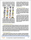 0000072939 Word Templates - Page 4