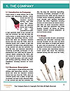 0000072943 Word Templates - Page 3