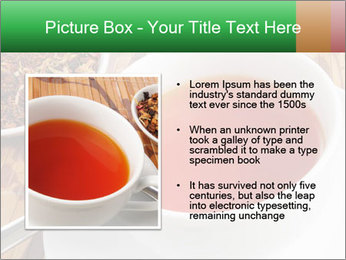 0000072949 PowerPoint Template - Slide 13
