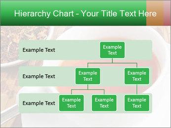 0000072949 PowerPoint Template - Slide 67