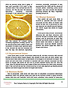 0000072949 Word Template - Page 4