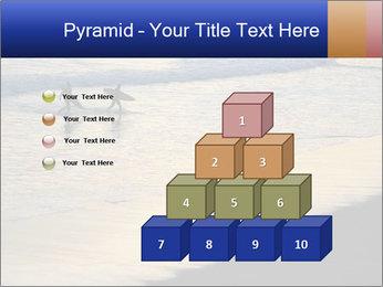 0000072950 PowerPoint Template - Slide 31
