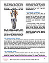 0000072952 Word Templates - Page 4