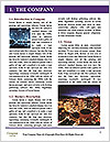 0000072953 Word Templates - Page 3